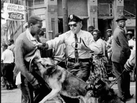 Berhaming Picture Of Dog Civil Rights