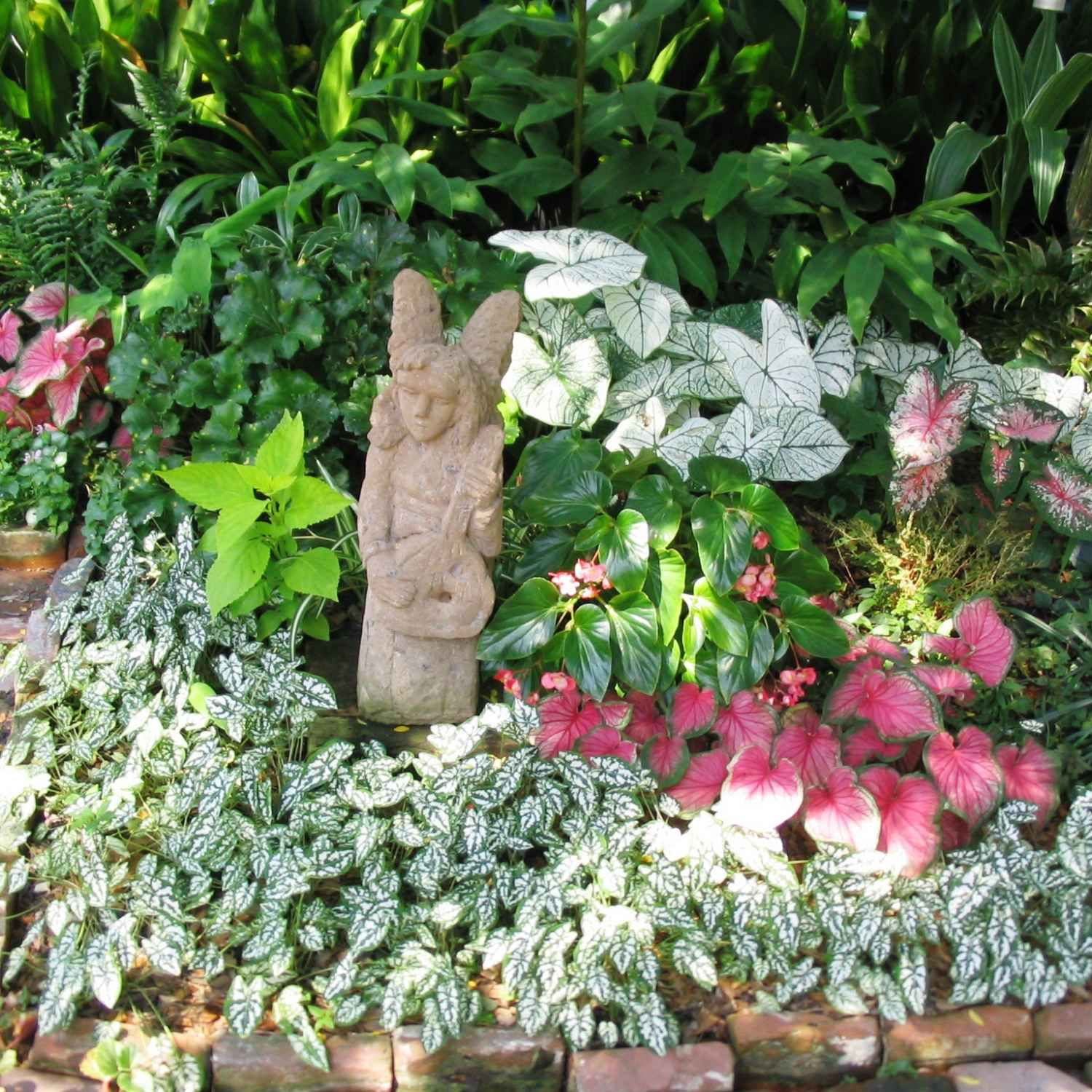 Flowering Plants That Grow In Shade Shade Garden Plants Flowers