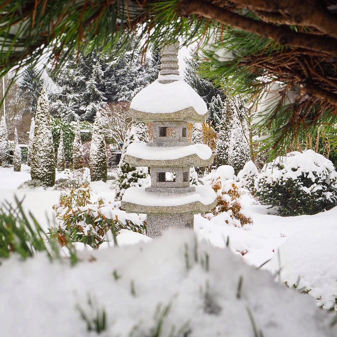 fresh snow in the japanese garden walkinthewoods germany munich