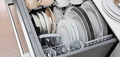 Unclog a Fisher & Paykel Dishdrawer Drain