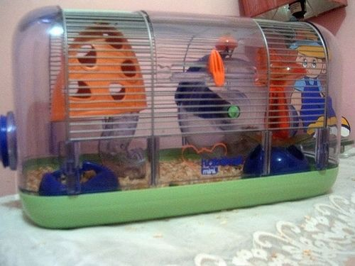 Hamster Cage Hamster Cages Hamster Cage Mouse Cage