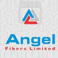 Angel Fibers Ipo Detail Price Band Check With Images Angel