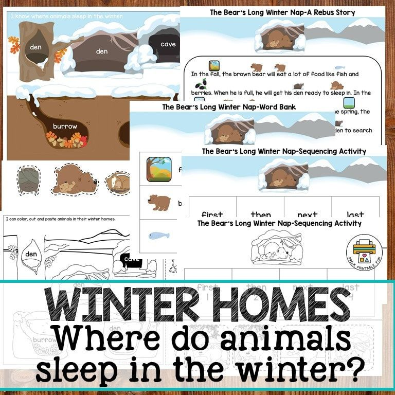 Where do animals sleep in the winter? This printable set