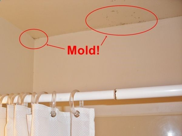 How To Clean BLACK MOLD From Walls Ceilings And Fixtures For Both - Cleaning black mold in bathroom