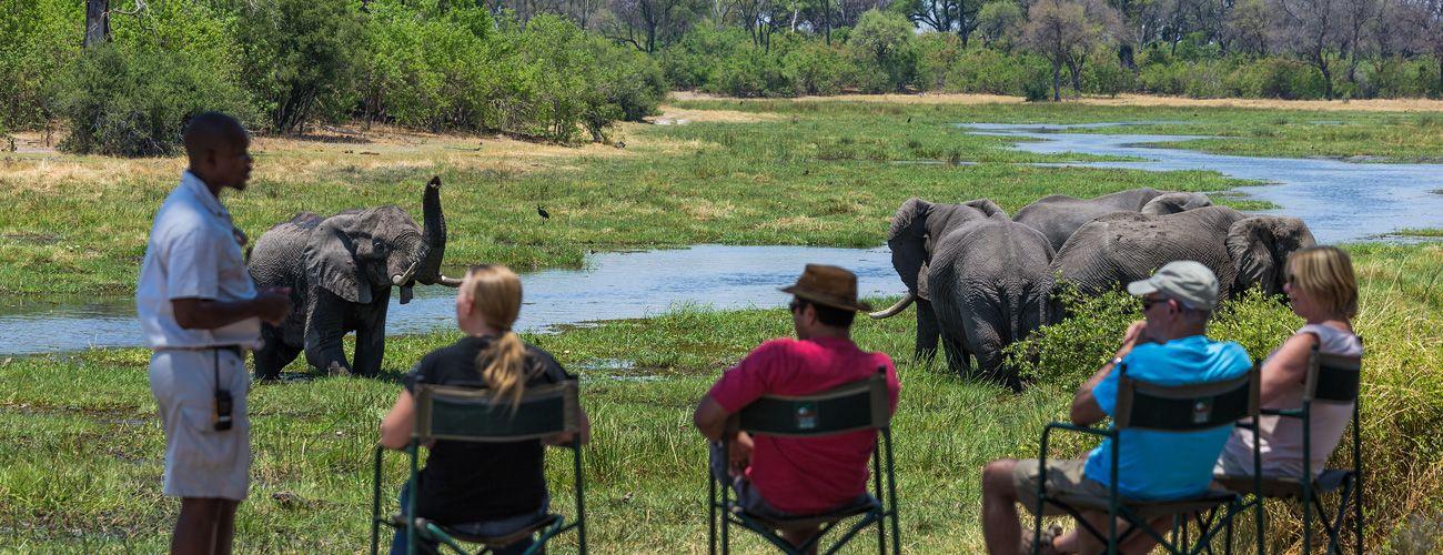 Machaba Safari Camp, Botswana. Machaba Camp is situated in