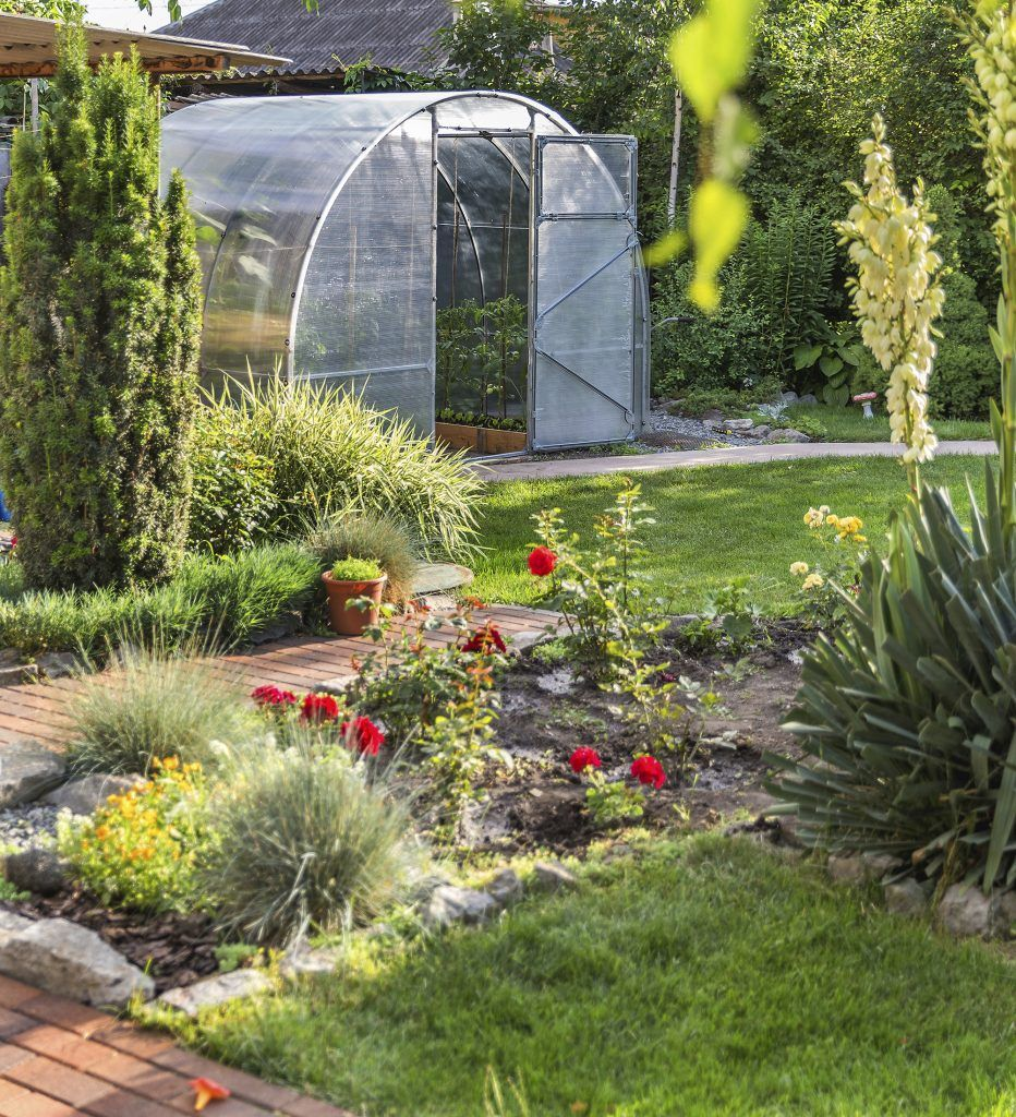 Zone 4 Gardeners Have A Rather Short Growing Season Of About 113 Days So Vegetable Gardening In Zone 4 Can Be C Xeriscape Plants Small Ornamental Trees Plants