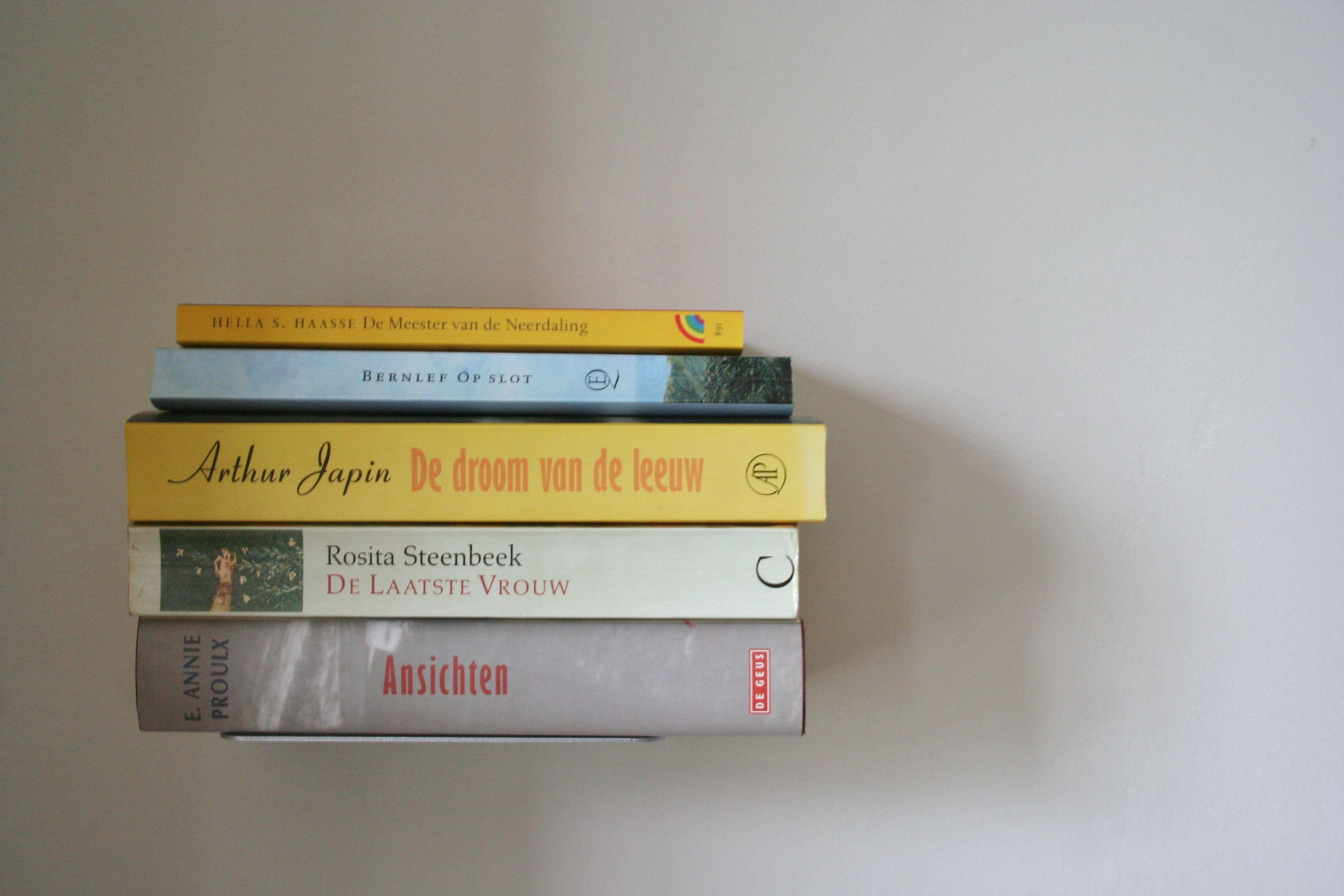 Er zijn genoeg boeken aanwezig om lekker te lezen.