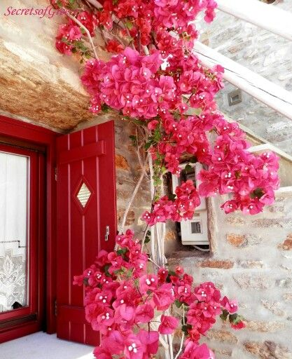 Beautiful colours of Greece!