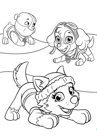 Everest Plays With Skye And Rubble Coloring Page 饼干图案 Paw