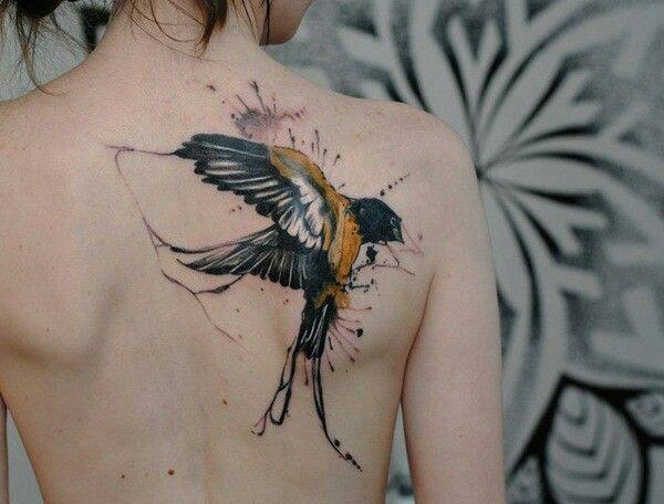 Swallow Swallow Tats Pinterest Swallows Tatting And Tattoo
