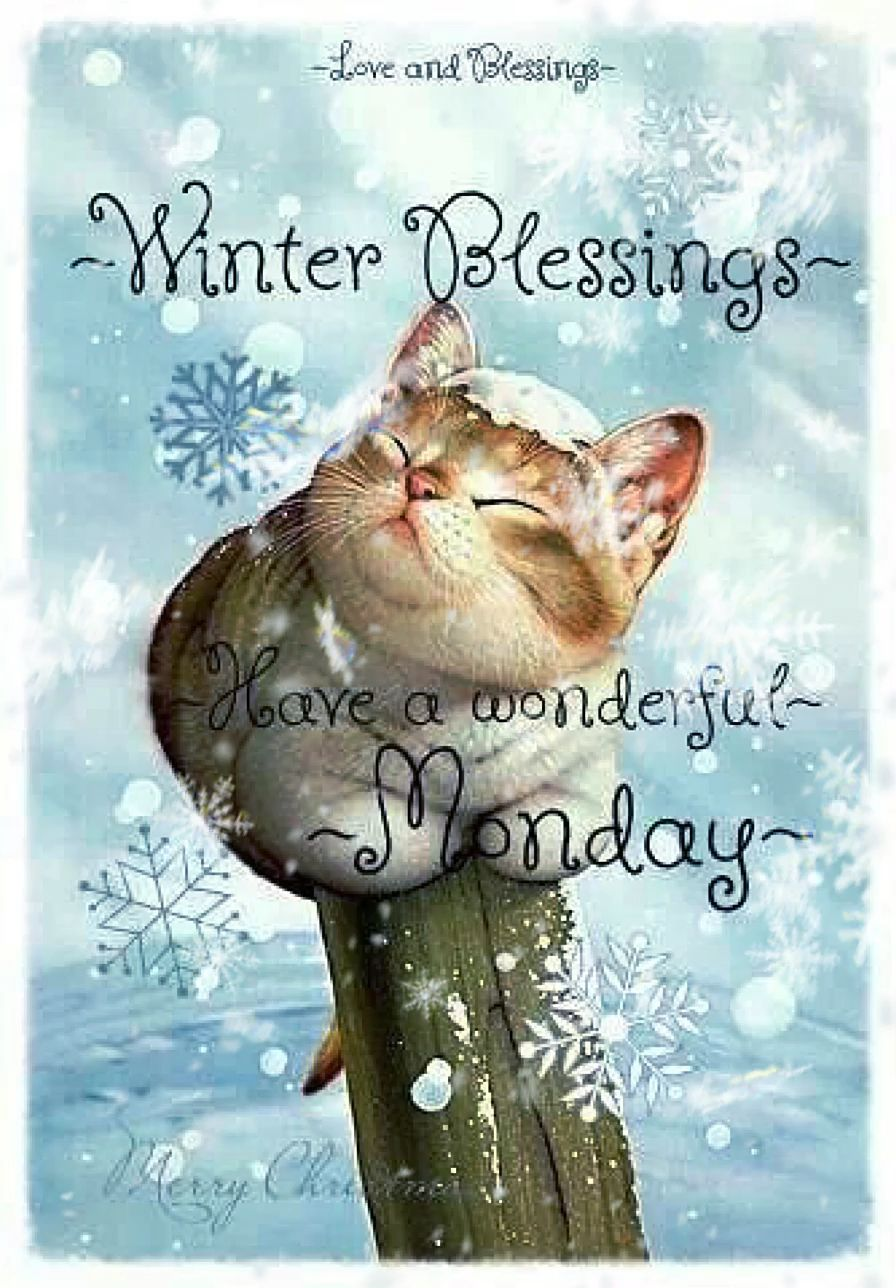 Photo of Winter Love & Blessings!