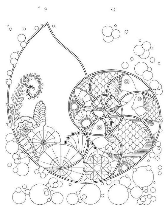 Trend Ocean Plants Coloring Pages 38 Fantasy Nautilus Shell with