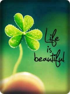 Life is besutiful