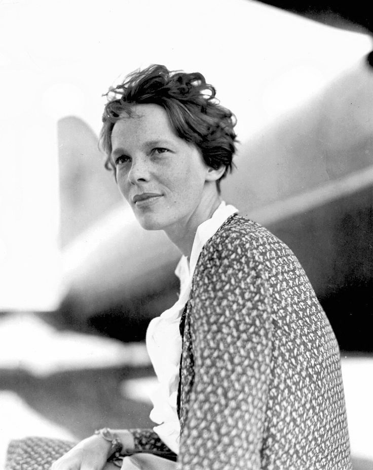 """""""Never interrupt someone doing something you said couldn't be done.""""   Amelia Earhart."""