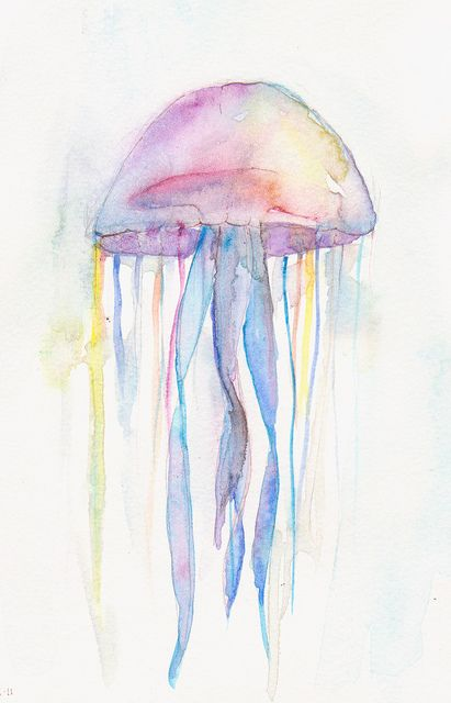 Jellyfish | Flickr - Photo Sharing!