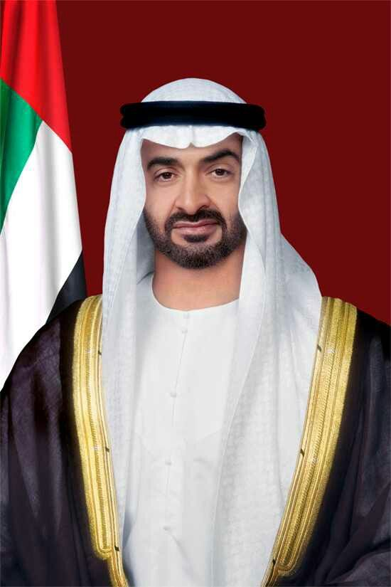 Pin On Nft Sheikh Zayed S Children