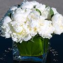 White peonies accent a table at an outdoor wedding.