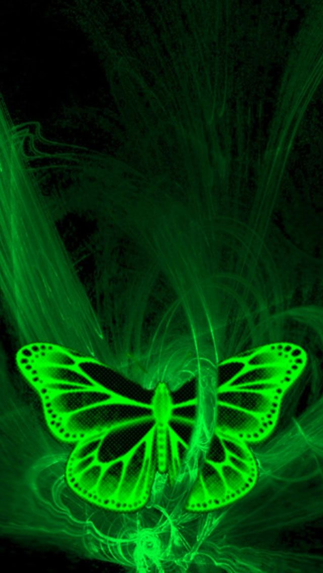 Iphone 5 Wallpaper Green Butterfly Green Butterfly Butterfly Wallpaper Iphone 5 Wallpaper