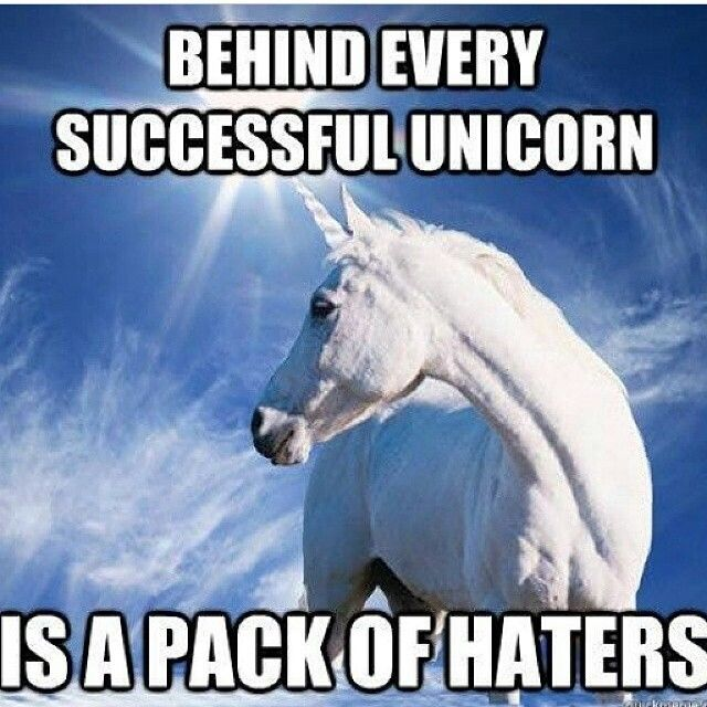 Behind every successful unicorn is a pack of haters! (I might be mixed in with the haters maybe)