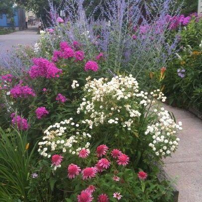 Perennial Flower Garden Design Perennial Front Garden Design