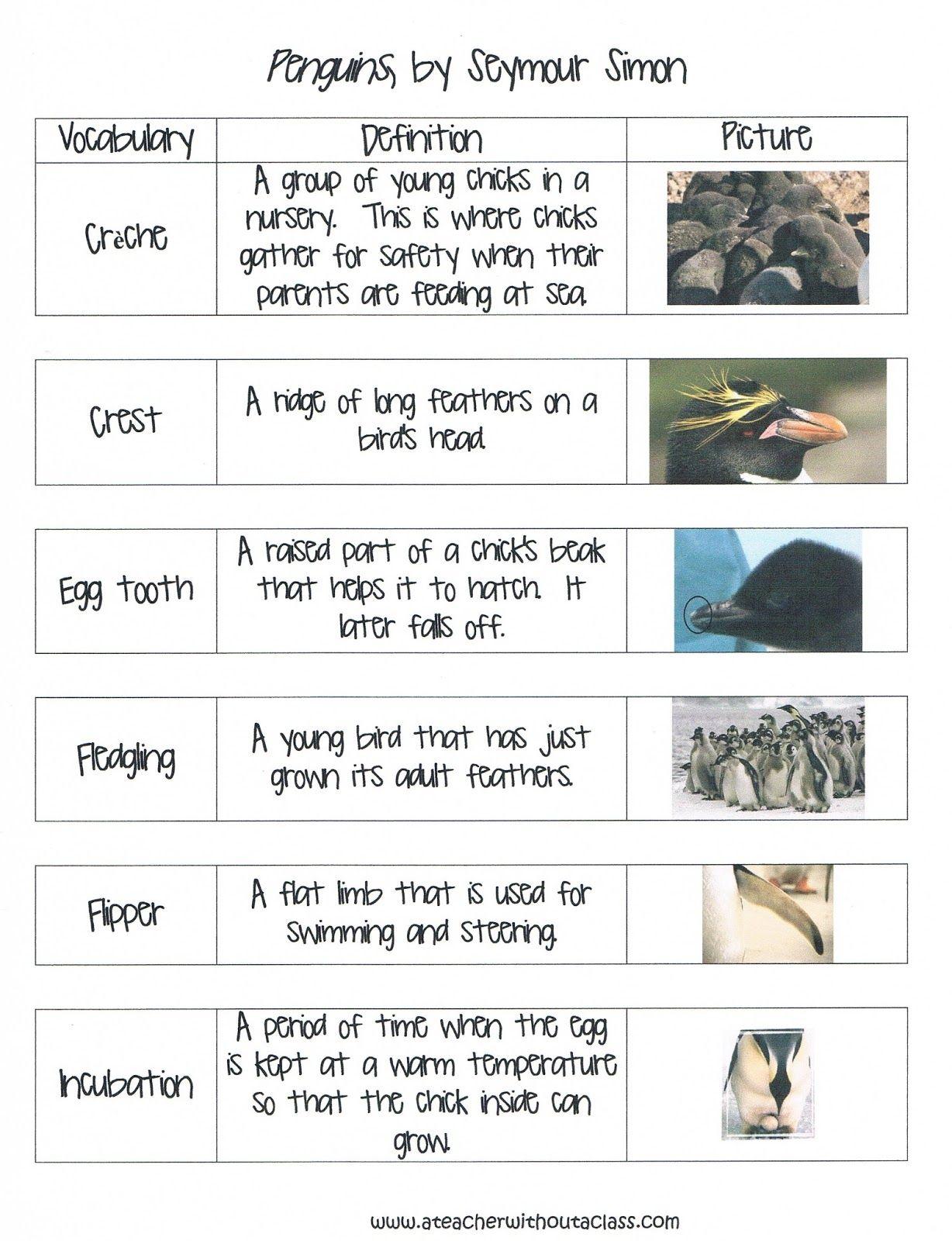 Penguin Vocabulary