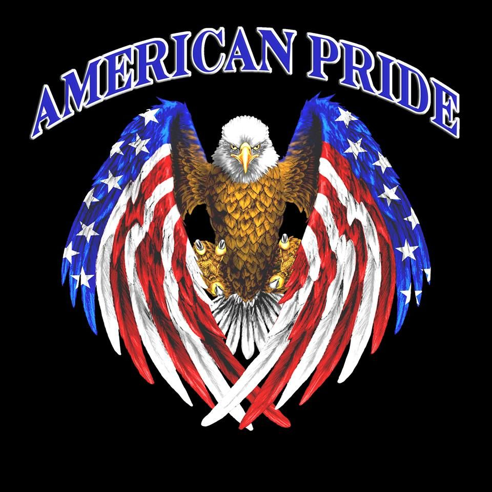 Im proud to be an american bald eagles pinterest american american pride biocorpaavc Images