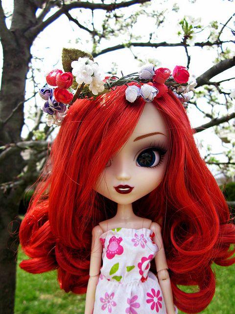 Spring Has Sprung!!!   Flickr - Photo Sharing!