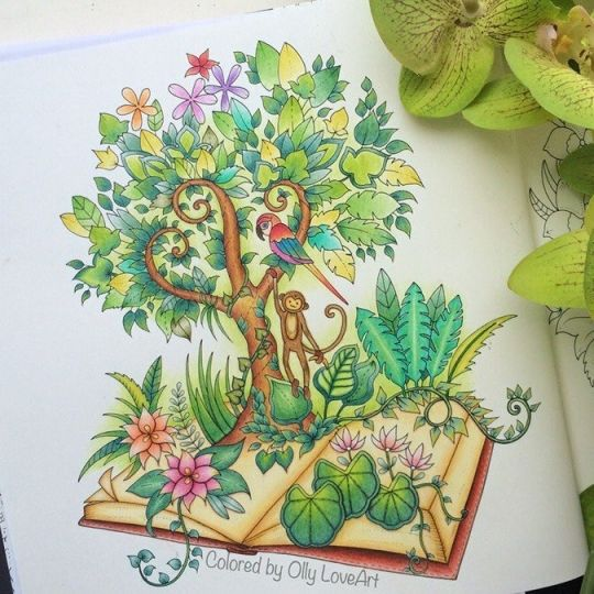 Johanna basford colouring gallery magical jungle - Dschungel malen ...