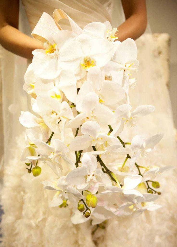 Corolle preziose..Il Bouquet di Orchidea