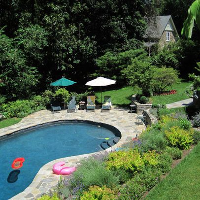 Kidney Shaped Pools Designs Google Search Kidney Shaped Pool