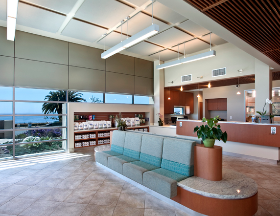Point Vicente Animal Hospital Rancho Palos Verdes Ca Rauhaus Freedenfeld Associates