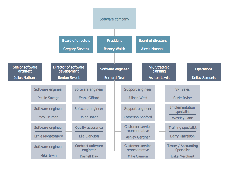 Software Company Org Chart Organizational Chart Organizational Chart Design Organization Chart