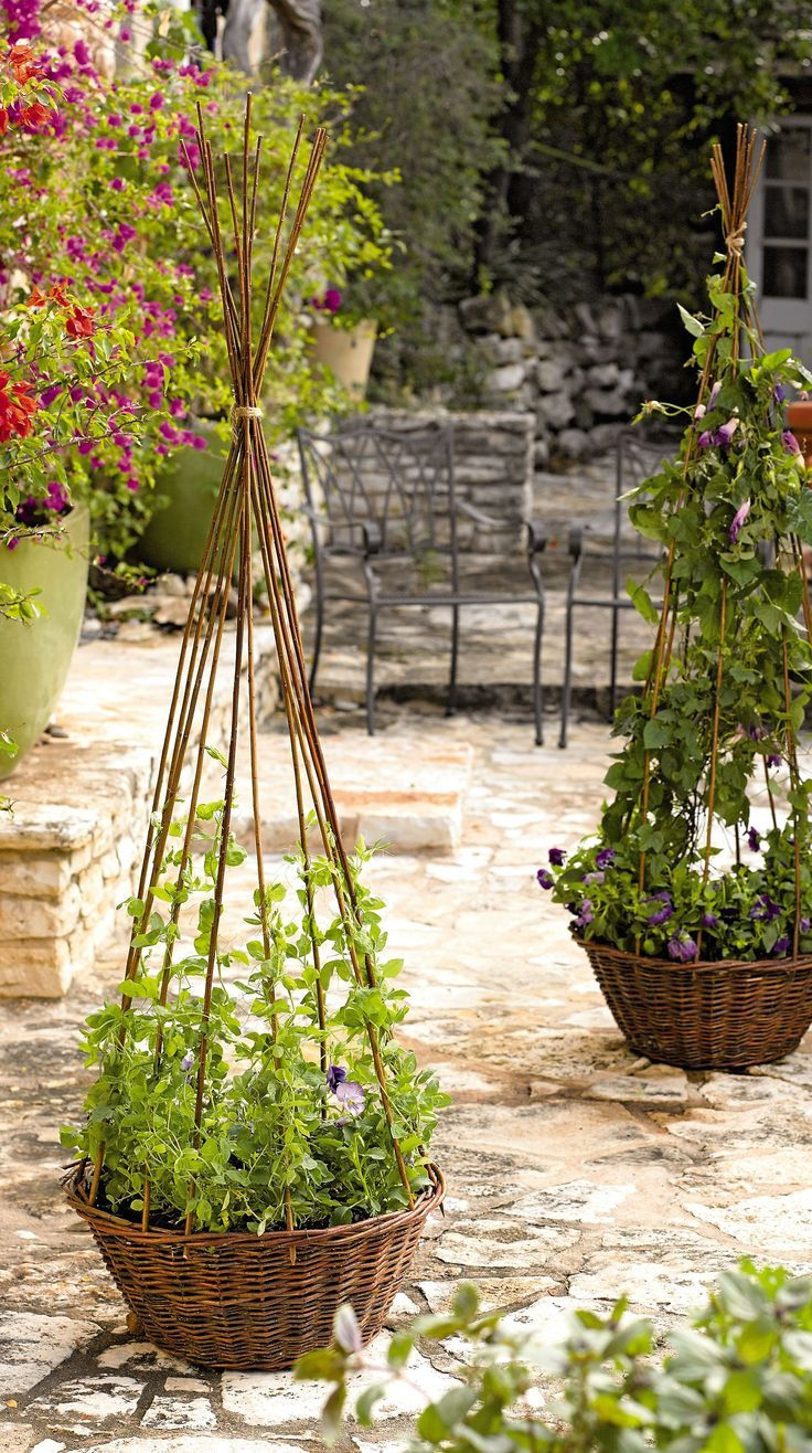 Willow Obelisk Planter   Gardeners Supply Company