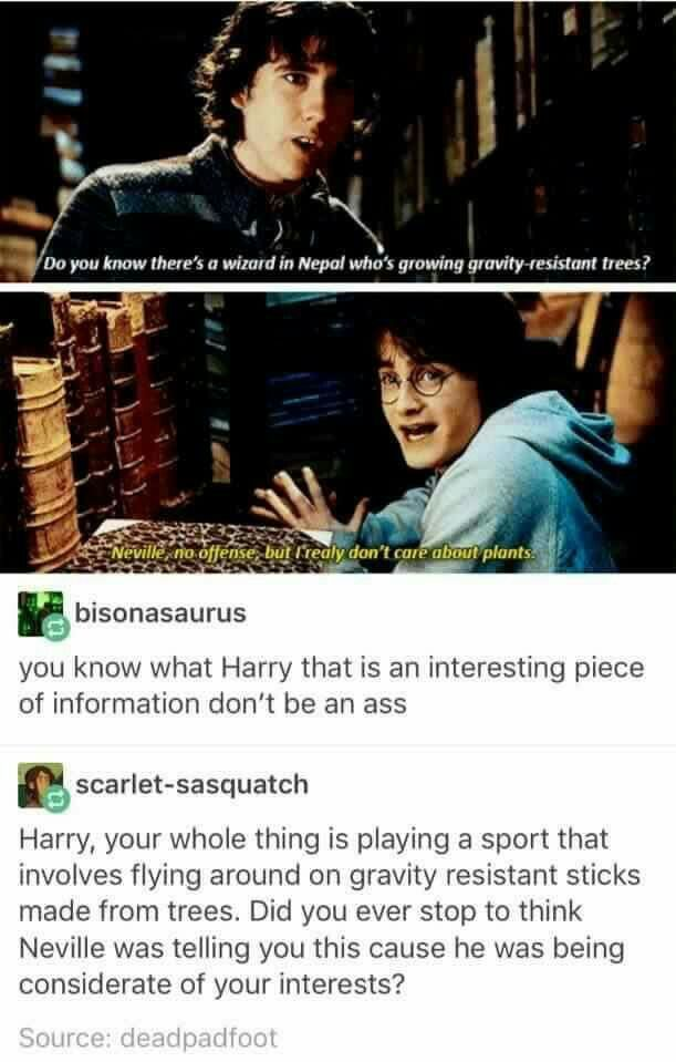 Pin By Emma Garrison On Harry Potter Fantastic Beasts And Other J K S Creatures Harry Potter Universal Harry Potter Obsession Harry Potter World