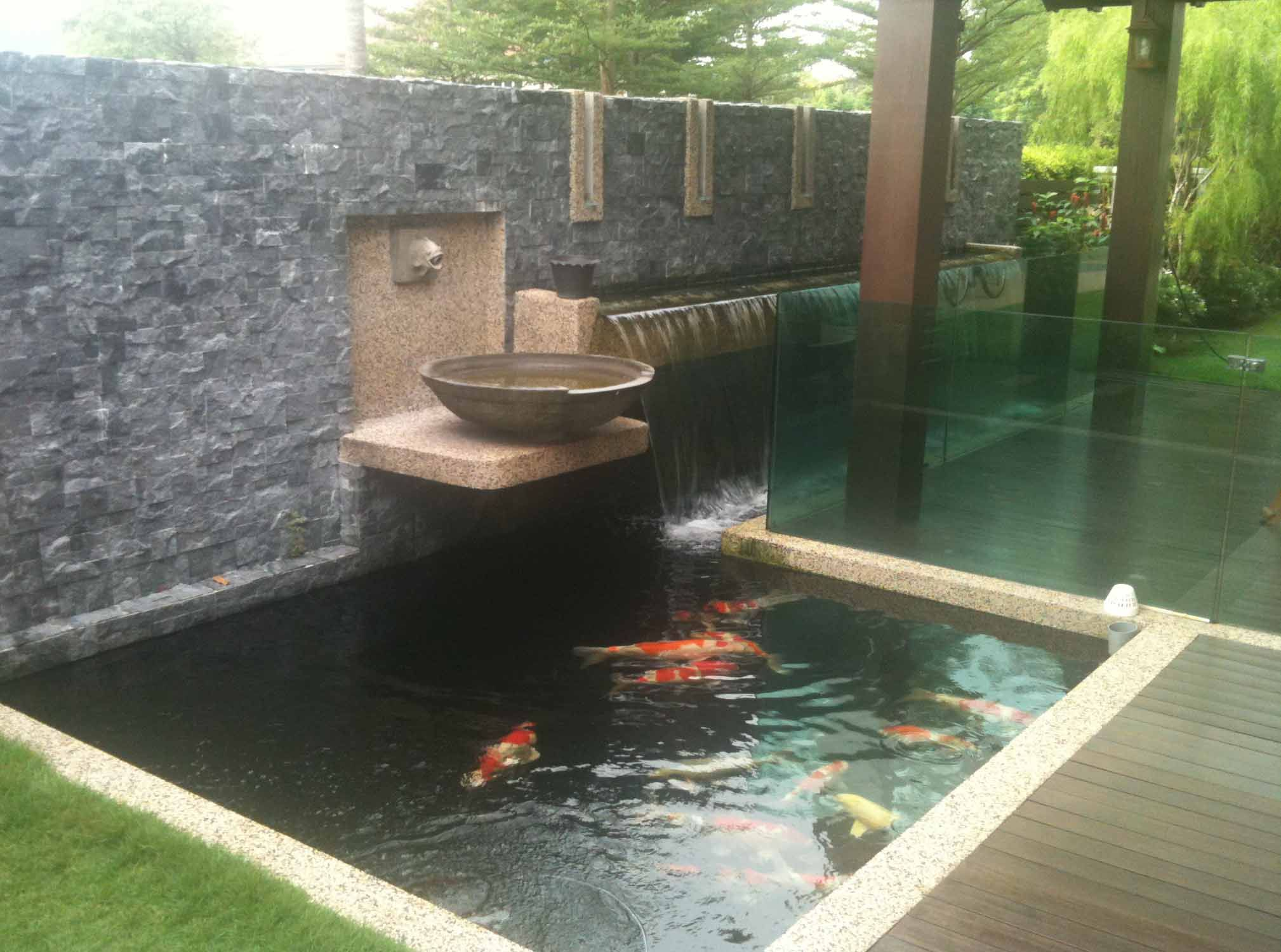 Rectangular tiled koi ponds google search water for Modern garden pond designs