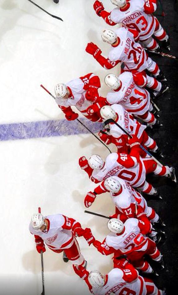 Very Cool Pic Red Wings Hockey Detroit Red Wings Detroit Red Wings Hockey