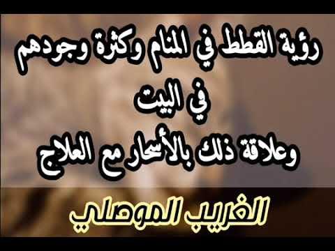 Pin By رقية شرعية On رقية شرعية Calligraphy Arabic Calligraphy Arabic