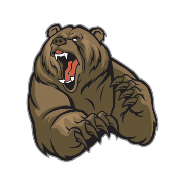 Grizzly Bear 13329 Bear drawing, Angry animals