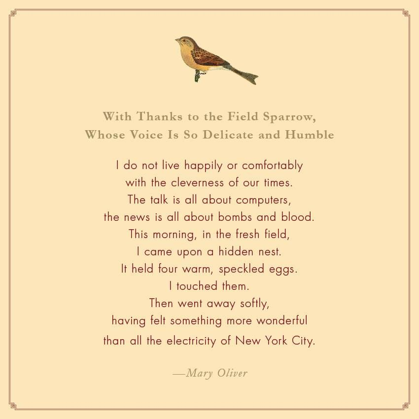 Image result for mary oliver with thanks to the field