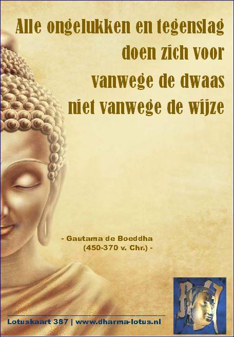 De rol van karma wordt binnen het boeddhisme geheel anders uitgelegd dan in het hindoeïsme. Daar wordt karma uitgelegd als goed of slecht en als beloning of straf voor handelingen uit een voorgaande periode/leven. Karma in het boeddhisme is goed noch slecht; het zijn alleen maar de lessen die nog geleerd dienen te worden. http://www.dharma-lotus.nl/lotuskaarten.asp