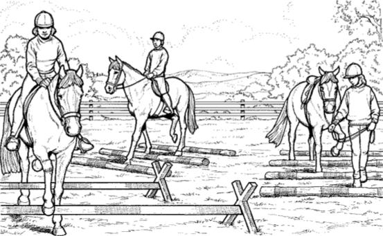 Ausmalbilder Pferde Springreiten Ausmalbilder Pferde Kostenlos Zum