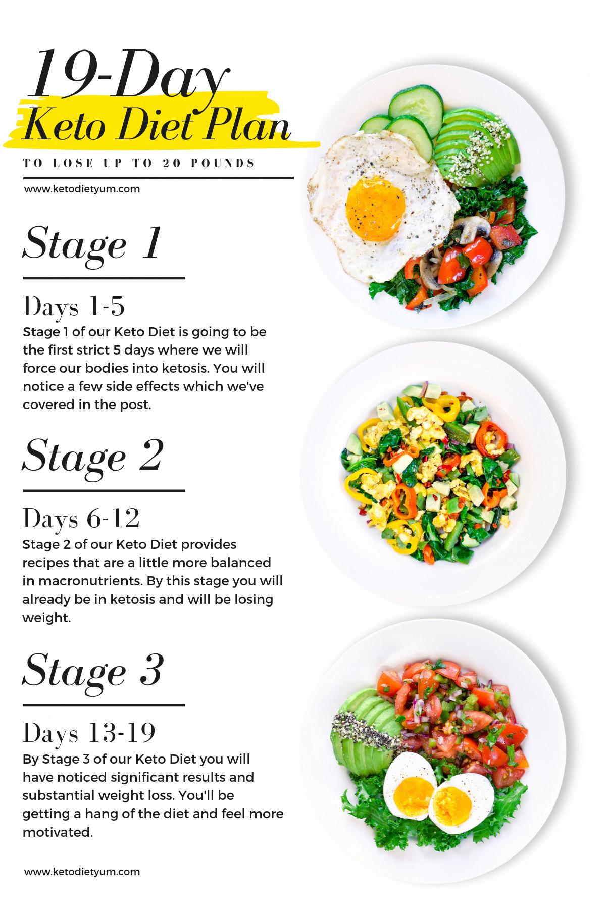 Strict Keto Diet Plan Vegetarian #FullKetogenicDietPlan