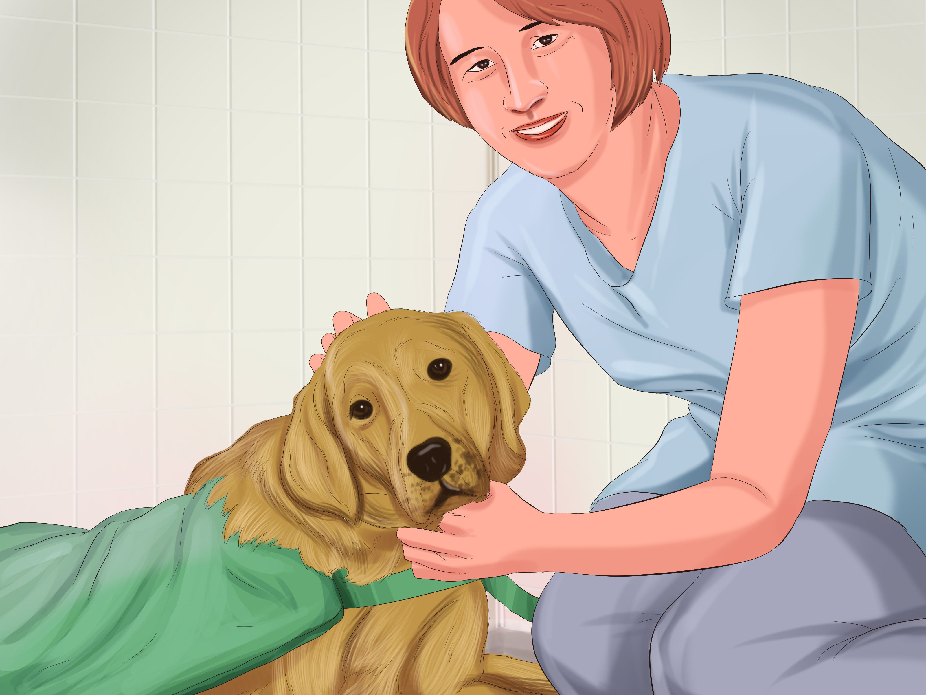 How To Train Your Service Dog Without A Professional Trainer Service Dogs Dog Training Service Dog Training