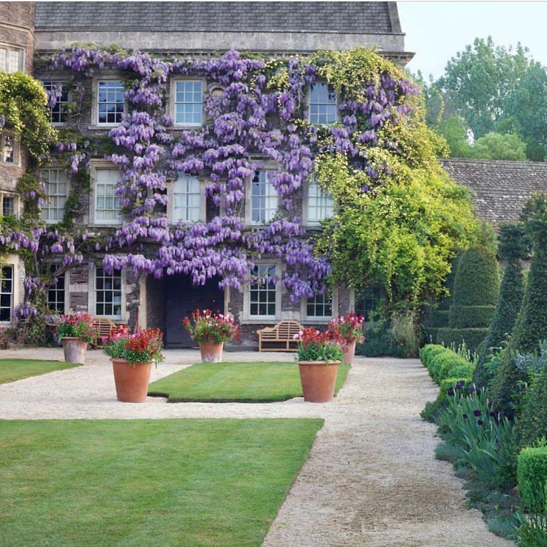 Country life..💜🌳 #garden #gardens #gardendesign #garden_explorers #garden_styles #gardensofinstagram #instagarden...