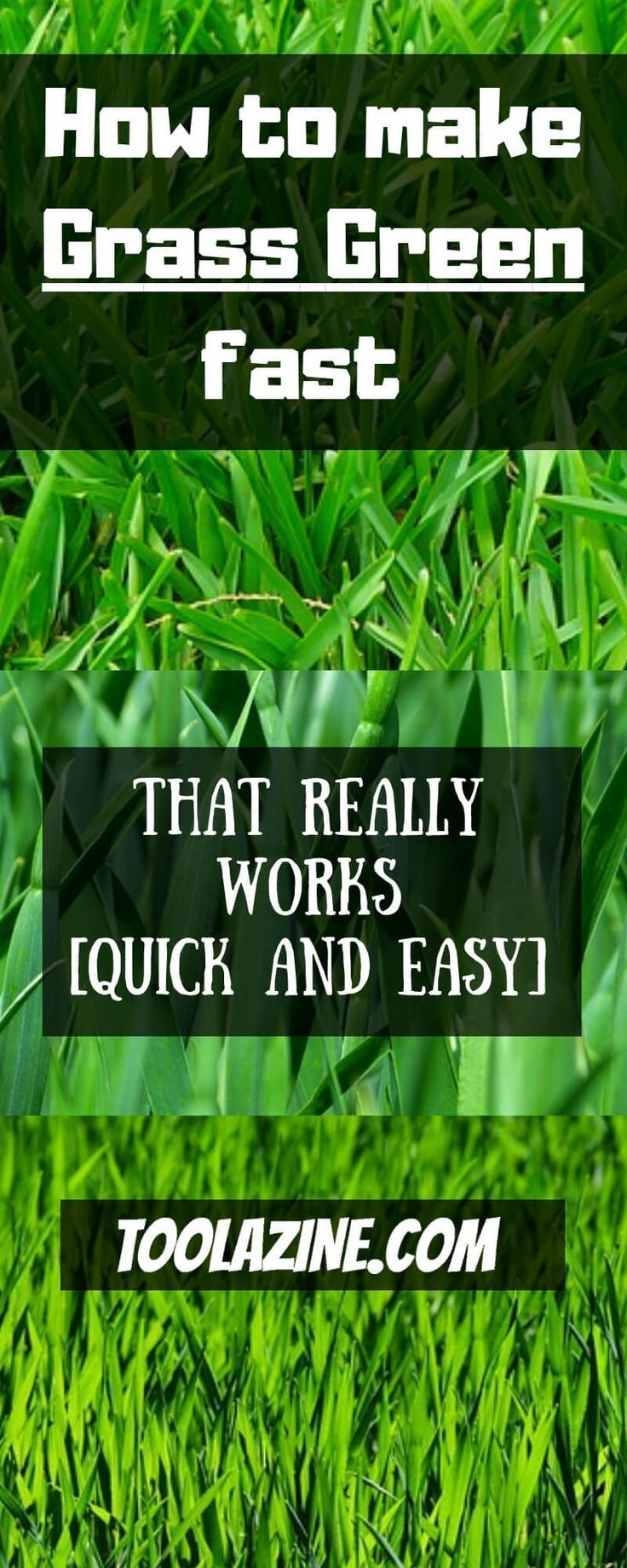 How To Make Lush Green Grass Fast 6 Actionable Steps Grass