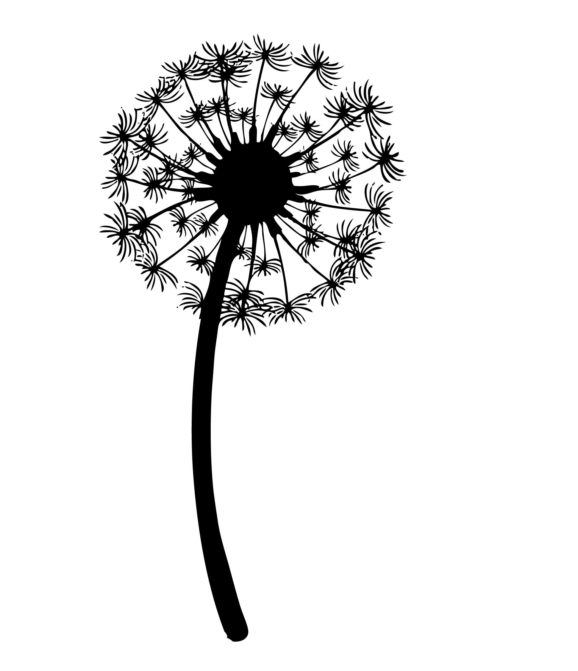 Image Result For Dandelion Black And White Drawing Dandelion Tattoo Design Dandelion Tattoo Dandelion
