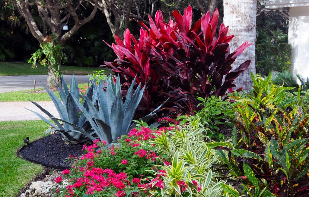 Front Yard Landscape Designer Boca Raton #landscapephoto