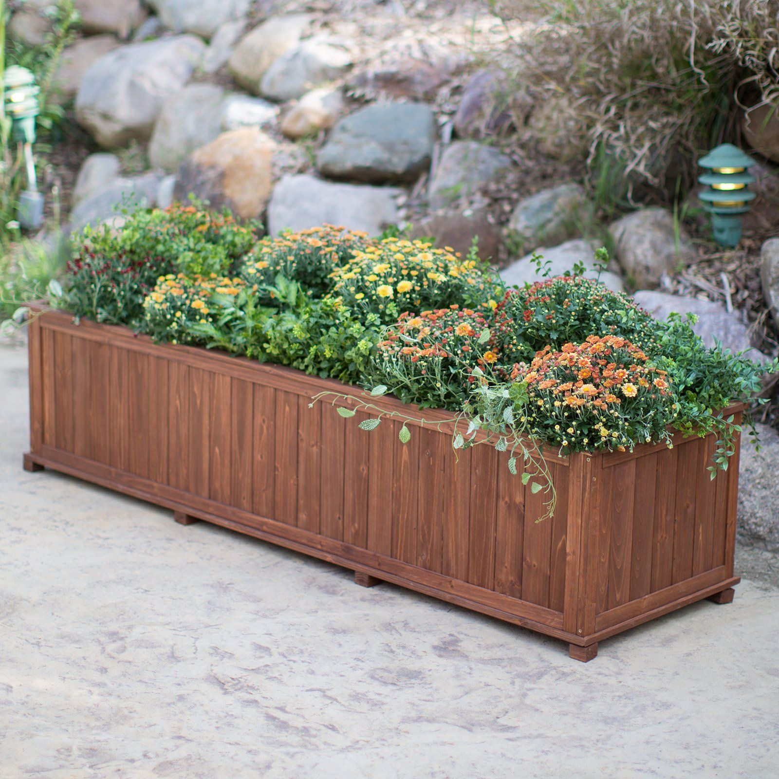 Coral Coast Rectangular Wood Aster Patio Planter Box 70 in and