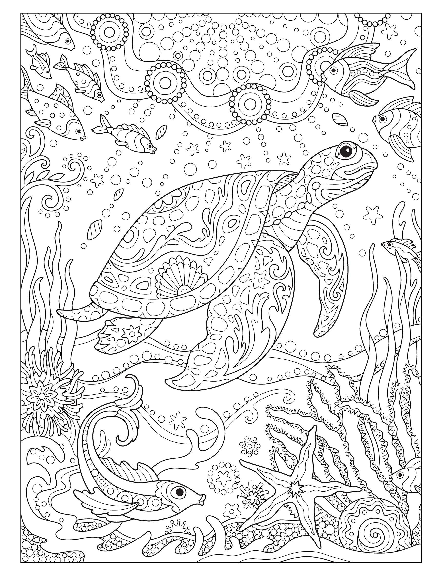 Amazon Com Creative Haven Fanciful Sea Life Coloring Book Adult