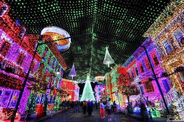 Osborne's Christmas lights. Disneyworld's Hollywood studios. - Osborne Family Lights Places I've Been Disney Christmas, Disney